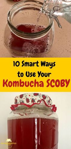 In five minutes learn 10 smart ways to use your excess kombucha SCOBYs. Holistic Health Tips for Beginners, Fermented Foods Kombucha Flavors, Kombucha Scoby, Kombucha Nutrition, Kombucha Brewing, Kefir How To Make, Kombucha How To Make, Fermentation Recipes, Canning Recipes, Drink Recipes