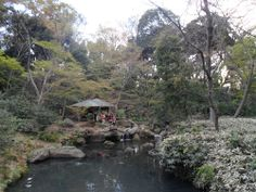 Rikugien Garden, Tokyo, Japan http://www.cheapojapan.com/see-the-cherry-blossoms-before-its-too-late-at-rikugien-garden/ #japan #sakura #cherryblossom #cherry #blossom #garden