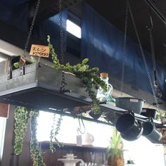 ハンギングシェルフ。上に植物を置いたり、キッチンツールを吊り下げたりして使えそう!