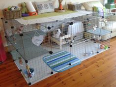 Bobby and Rosies new enclosure made from grids and measuring 6 ft x 3.7 ft with added levels.  Their litter box is covered which helps keep the hay inside.