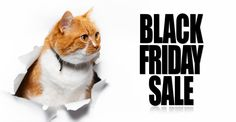 Are you the type to get up at the crack of dawn and shop on Black Friday or do you prefer to shop from the convenience and comfort of your cat-themed pajamas? Things may be a bit different this year – stores are extending their Black Friday deals to week-long events and most shopping can […] The post The Best 2020 Black Friday Deals for Cats appeared first on The Catington Post.