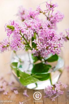 Romantic bunch of flowers Bunch Of Flowers, Sweet Home, Romantic, Table Decorations, Plants, Home Decor, Decoration Home, Bouquet Of Flowers, House Beautiful