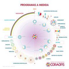 Programas a medida para desarrollar en organizaciones