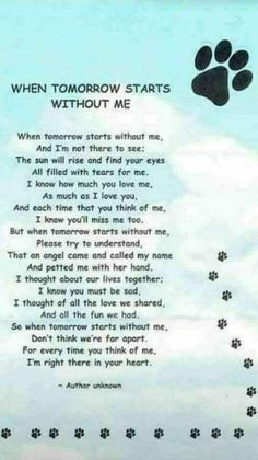 Losing A Dog Quotes Grief Rainbow Bridge Pet Loss Souvenir Animal, I Love Dogs, Puppy Love, Pet Loss Grief, Loss Of Pet, Dog Poems, Pet Remembrance, Animal Quotes, Pet Memorials