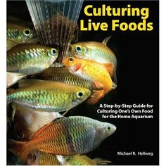 Culturing Live Foods: A Step-by-Step Guide for Culturing One's Own Food for the Home Aquarium, a book by Mike Hellweg Aquarium Fish Food, Home Aquarium, Snails Recipe, Gelatin Recipes, One Fish, Aquaponics, Tropical Fish, Nutritious Meals, Betta
