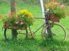 vélo fleuri photo - Recherche Google