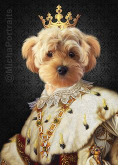 Dog Canvas Painting, Animal Dress Up, Animal Portraits, Dog Illustration, Jolie Photo, Weird Art, Pet Clothes, Dog Art, Cool Artwork