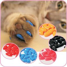 New 20Pcs/Lot Colorful Soft Pet Dog Cats Kitten Paw Claws Control Nail Caps Cover Size With Adhesive Glue // FREE Shipping //     Get it here ---> https://thepetscastle.com/new-20pcslot-colorful-soft-pet-dog-cats-kitten-paw-claws-control-nail-caps-cover-size-with-adhesive-glue/    #hound #sleeping #puppies