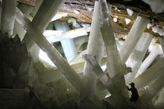 Crystals made of gypsum up to 11 meters long and about 1 meter thick, in the Cave of the Crystals, in Naica, Mexico