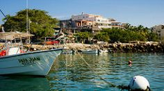 Papa Juan (Kraften) Tags: travel blue sea bird beach pelicans water mexico puerto coast boat pacific jalisco pelican coastal shore vallarta nautical 500px ifttt