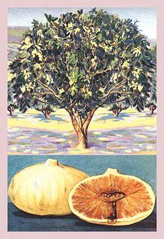 Fig Tree Drawing Google Search Fig Leaf Pinterest