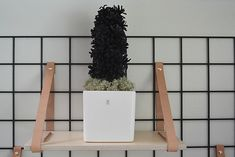 käpyhyasintti Natural Materials, Pine Cones, Ladder Decor, Christmas Diy, Easy Diy, Koti, Autumn, Fall, Home Decor