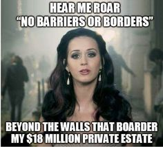 This is one stupid libtard! ~*Y'all realize a fence in your backyard is border too? So, ALL lib- nuts remove your fences.~*