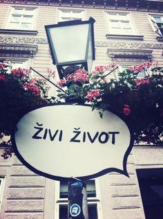 Zivi zivot - #live your #life, Bosnia and Herzegovina