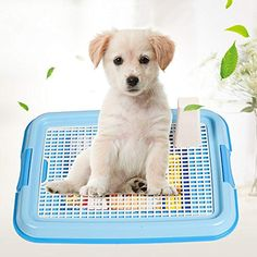 Lattice Dog Toilet Potty Pet Toilet for Dogs Cat Puppy Litter Tray Training Toilet Easy to Clean Pet Product 48 x 36 x Pet Dogs, Dogs And Puppies, Dog Cat, Puppy Litter, Litter Box, Dog Toilet, Toilet Mat, Cheap Pets, Puppy Pads