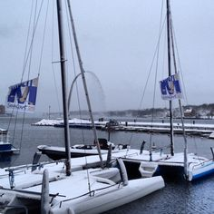 No sailing today! Muli Cup flag looks good though. www.seacart26.com