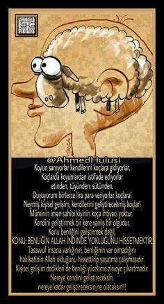 Koyun/Koç