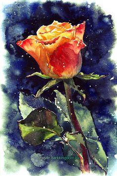 December Rose by kir-tat.deviantart.com