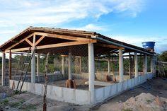 Resultado de imagem para como fazer um galinheiro Chicken Shed, Chicken Cages, Backyard Chicken Coops, Chicken Coop Plans, Building A Chicken Coop, Chickens Backyard, Diy Chicken Coop, Cattle Farming, Pig Farming