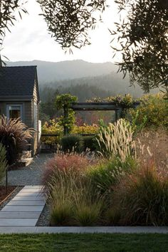 Just a tiny bit of grass and lots of plants! Creating An Outdoor Oasis - Five Ways — Hurd & Honey