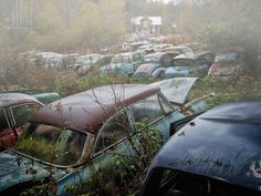 Car Graveyards Photography-1B