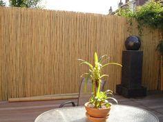 cloison bambou avec fontaine en pierre