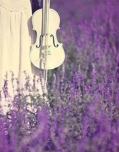 Purple music...