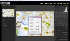4 Lesser-Known New Features in Lightroom 5 | Pretty Presets for Lightroom