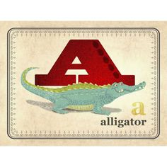 Oopsy daisy 'A is for Alligator' 24 x 18-inch Stretched Canvas Wall Art