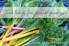 Ideas for an urban vegetable garden.