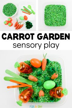Set up a carrot garden sensory bin for your kids as part of an Easter or preschool garden theme. Includes free printable carrot and rabbit shape cards. Fun Activities For Preschoolers, Early Learning Activities, Sensory Activities Toddlers, Easter Activities, Spring Activities, Sensory Bins, Farm Sensory Bin, Farm Activities, Sensory Play