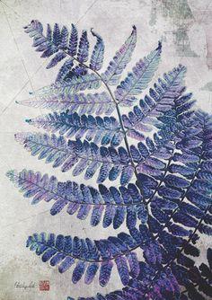 Botanical illustration by sdoshimizu