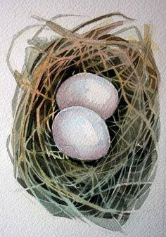 Dove Nest   Original Watercolour  nightly study 259 by jodyvanB