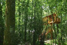 Dormir en una cabaña en un árbol en Basoa Suites (Navarra)