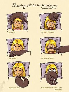 sleeping habits?..... My adorable cat loves to sleep like #2 lately. but yes all of them are her