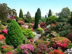 Gardens in England   LEONARDSLEE GARDEN (ENGLAND)