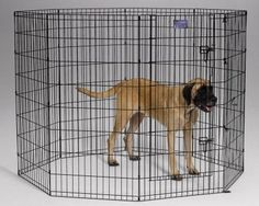 DOG CONTAINMENT - EXERCISE PEN - BLACK EXERCISE PEN - 24X48 8 PANEL - MIDWEST METAL PRODUCTS CO., - UPC: 27773010708 - DEPT: DOG PRODUCTS