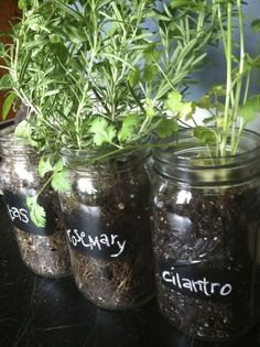 Oh wow, does it get any more DIY-trendy than this? Grow your own kitchen herbs in mason jars & use chalkboard paint to label them!