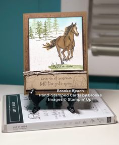Boy Cards, Cute Cards, Horse Cards, Hand Stamped Cards, Kids Birthday Cards, Stampin Up Catalog, Stamping Up Cards, Animal Cards, Butterfly Cards