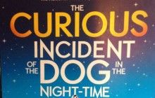 The Curious Incident of the Dog in the Night-Time comes to Truro | 5 star Cornwall cottages | The Valley Resort