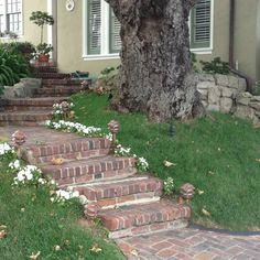 old bricks for steps Brick Steps, Concrete Steps, Porch Ideas, Patio Ideas, Yard Ideas, Outdoor Ideas, Outdoor Decor, Steep Gardens, Front Door Steps
