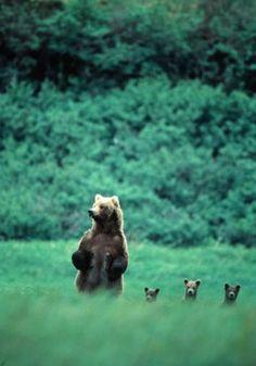 Les enfants on reste cachés... C'est ce qu'on fait maman !!! Personne ne peut nous voir !