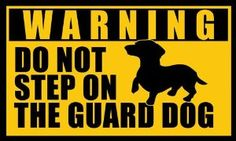 Amazon.com: DACHSHUND Do Not Step on the Guard Dog Sticker (warning dach funny): Automotive