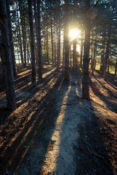 Long Shadows by Richard Graham, via 500px