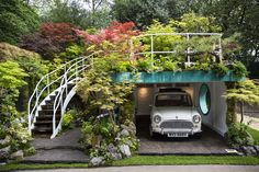 chelsea flower show 2016 - Google Search