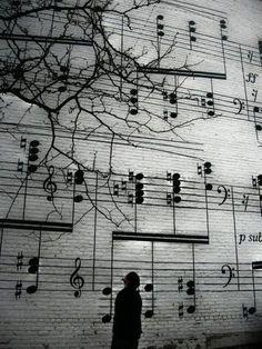 La música da alma al universo, alas a la mente, vuelos a la imaginación, consuelo a la tristeza y vida y alegría a todas las cosas.  Platon