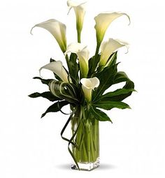 When it comes to sheer personality and charm, perhaps no other bloom can match the elegant calla lilies. In this original arrangement, callas is hown a stage of its own personality for that rare beauty of this calla liliy is known for. Church Flowers, Funeral Flowers, Wedding Flowers, Lily Wedding, April Wedding, Ikebana, Fresh Flowers, White Flowers, Beautiful Flowers