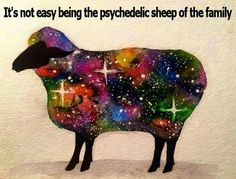 It's not easy being the psychedelic sheep of the family,