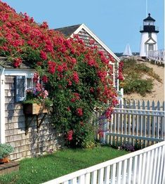 "The island of Nantucket is featured in all of Elin Hilderbrand's novels, including her upcoming one ""The Matchmaker."" (cottages by the sea cape cod) Nantucket Style, Nantucket Island, Nantucket Cottage, Nantucket Beach, Cottages By The Sea, Beach Cottages, The Places Youll Go, Places To Go, Les Hamptons"