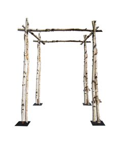 Birch Chuppah – Shippable